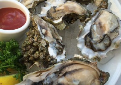 oysters in half shell